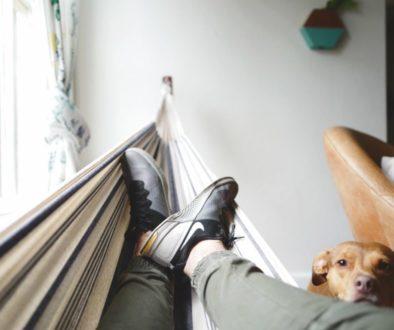 Muž a pes